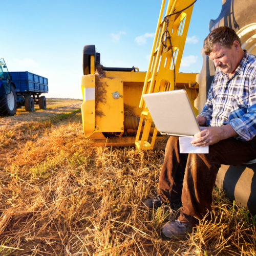 Farmer calculate yield in the computer